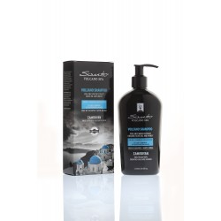Sulfate-Free Shampoo for Dry, Color-treated and Damaged Hair 250ml